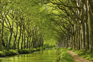camping le Martinet rouge-Canal du midi